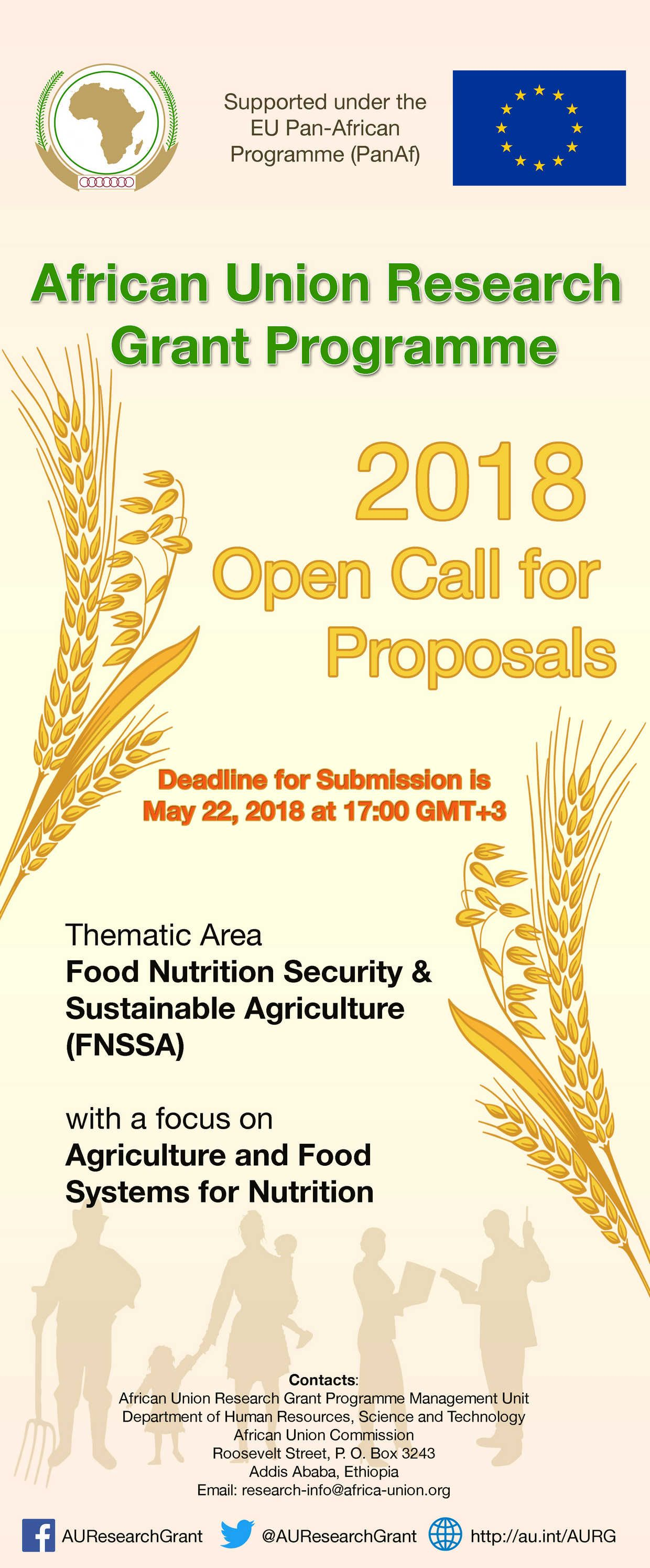 Open Call for Proposals 2018 : African Union Research Grant II