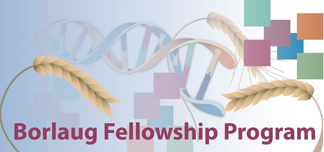 Borlaug-Fellowship-Program