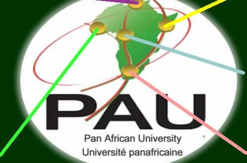 Université Pan Africaine : Appel de candidatures