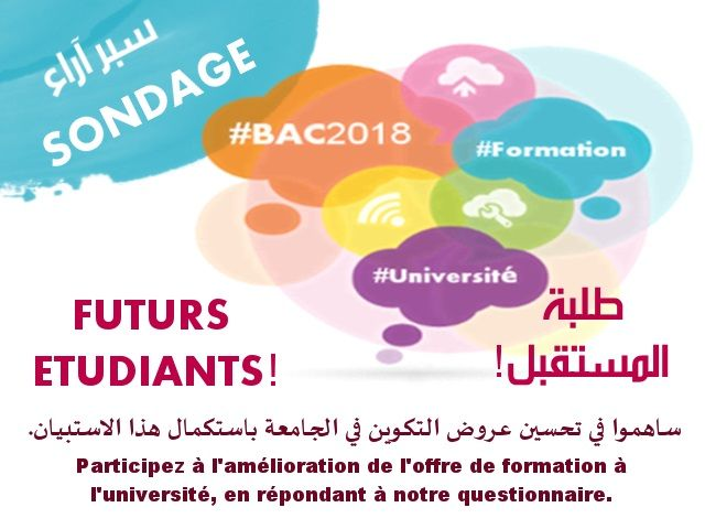 Open houses for future Baccalaureate Degree holders 2018 and Survey